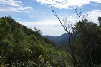 View back towards Tidal River